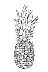 Saftige Ananas - zum Ausmalen!