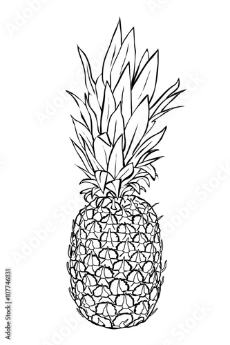 """""""saftige ananas  zum ausmalen"""" stockfotos und"""