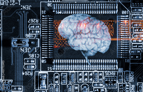 computer human brain essay