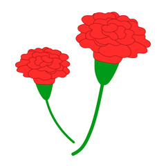 simple red carnation, vector
