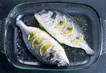Fresh Raw Sea Bream Fish with herbs. ready to cook