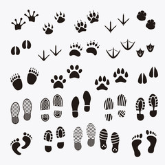 Man footsteps and Paw Print