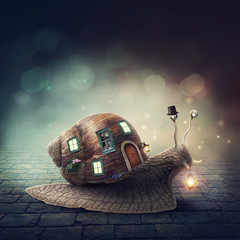Snail with a shell house