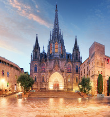Foto op Canvas Barcelona Barcelona cathedral