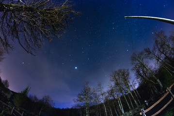 Fisheye view of the starry sky with blurred motion clouds, captured from sparse beech woodland. Jupiter and Lion constellation in the center. Scenic distortion and 180° view.