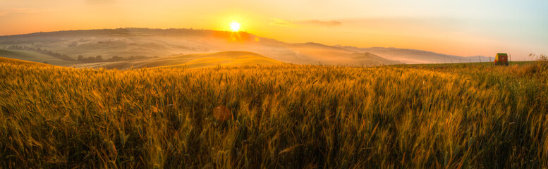 Tuscany wheat field panorama at sunrise