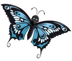 wonderful blue butterfly