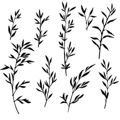 set of tree branches with leaves