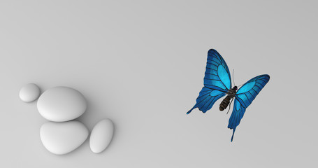 Türkiser Schmetterling von oben
