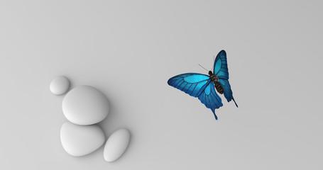 Blauer Schmetterling von oben