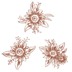 Graphic Sunflower isolated on white background, Drawing sketch vector illustration, Monochrome, Template for design card, menu and etc