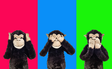 Image result for 3 wise monkeys