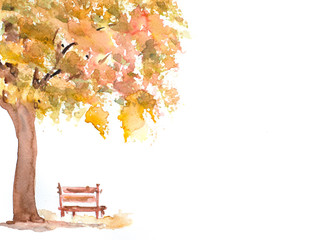 Autumn tree with wooden bench