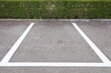 Empty Space in a Parking Lot with flower falling ..