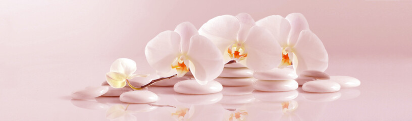 Poster Orchidee White Orchid with white pebbles on the pale pink background. Panoramic image