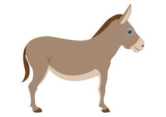 Cute donkey cartoon illustration.