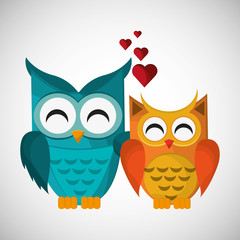 Group of owls, vector illustration, graphic design