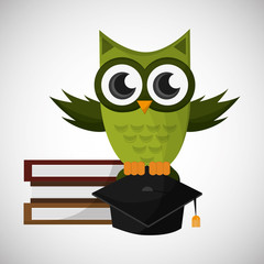 Vector illustration of an Owl, graphic design
