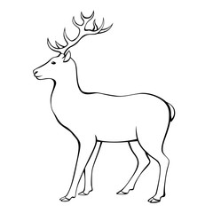 Deer horns animal black white isolated illustration vector