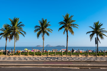 Wall Mural - Palm Trees Along the Ipanema Beach