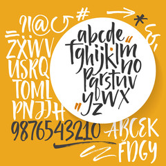 Vector alphabet. Hand drawn letters, numbers, signs. Letters of the alphabet written with a brush