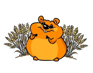 Hamster wheat field animal character  cartoon illustration