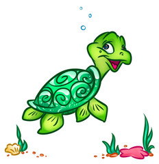 Sea turtle animal character  cartoon illustration
