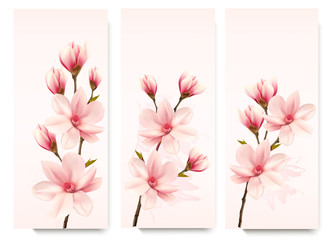 Set of nature flower magnolia banners. Vector.