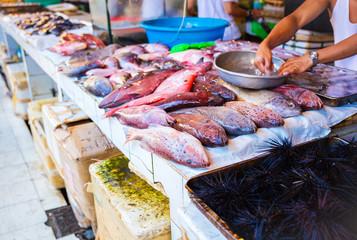 Seafood at fish market