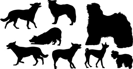 eight black isolated dog silhouettes
