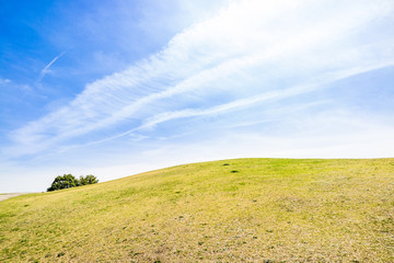 風そよぐ丘