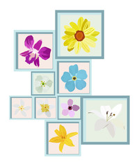 Frame on wall with many kind of flowers as decorate. Vector Illustration Design.