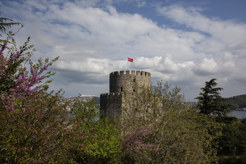 stanbul Redbud Tree Rumeli Fortress Built Structure Architecture Travel Destinations Horizontal