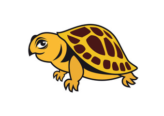 Young turtle vector. Cartoon character turtle. Illustration of a beautiful turtle. Vector turtle on a white background