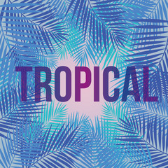 """Text """"Tropical"""" on a background of palm leaves."""