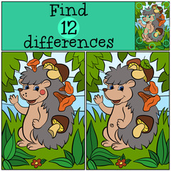 Children games: Find differences. Little cute hedgehog has a lot of mushrooms in his needles.