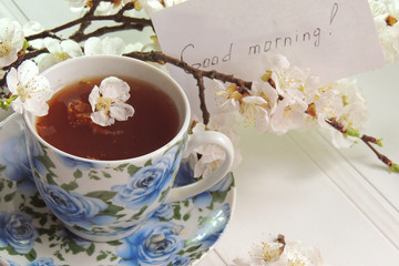 Tea, blossoming apricot twig