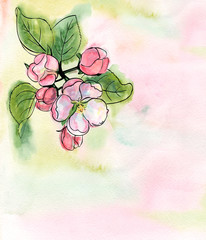 watercolor illustration with spring blossoms