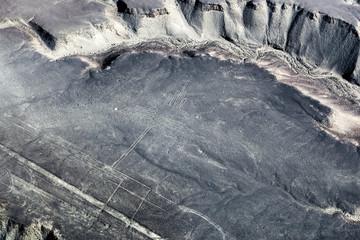 drawing hummingbirds to desert of Nazca