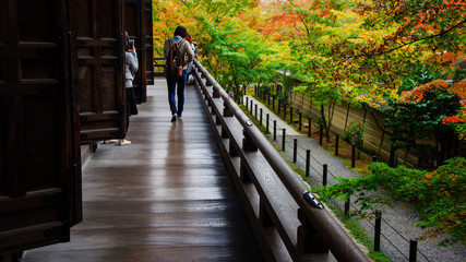people enjoy autumn leaves near Eikando temple