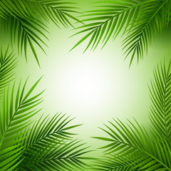 Tropical palm tree frame with copy space.