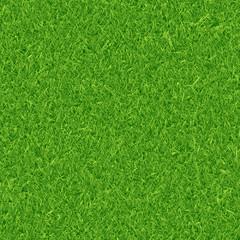 Aluminium Prints Green Green grass background
