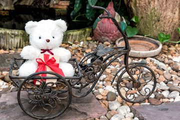 white teddy bear holding present on bicycle in garden background, love concept