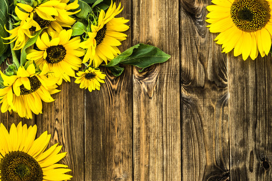 Sunflowers on rustic wood background. Flowers backgrounds.