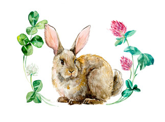 Rabbit in flower circle. Watercolor hand drawing illustration. Spring composition. Rabbits background, watercolor composition. Flower backdrop. Bouquet of  clover