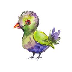 Sketch of tropic green bird. Funny hand drawn sketch.