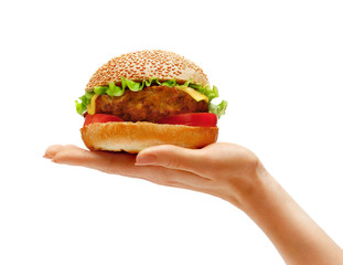 Hands holding a hamburger, isolated on white background.  High resolution product