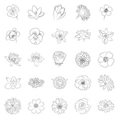 simple black outline flower icon set on white background
