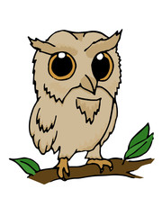 Hand drawn illustration of owl