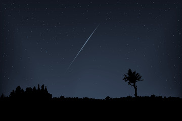 Meteor vector. Falling meteor in the night star sky.